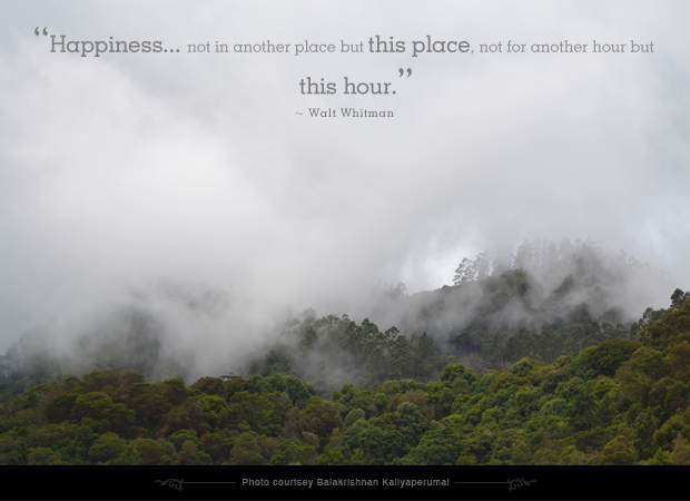 Happiness, I Choose Happiness, Quote of the Day, Thoughts, Doodles, Love, Inspiration, Quotes, Happiness, Recipes, Sowing Happiness, Spreading Love, Positive Thoughts, Gulmohar Doodles, Puneeta Prakash Blog, Puneeta Prakash, Personal Blog, Blogger