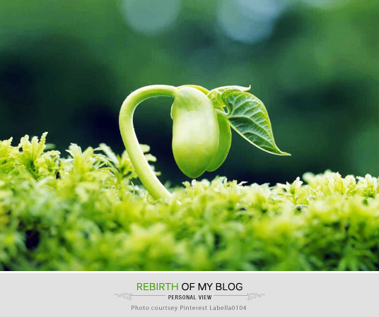 Rebirth, Reviving my blog, Giving new life, Blogging Struggles, Blooger Life, Art, Inspiration, Life, Lessons, Blogging World, Start of a New Chapter, Thoughts, Doodles, Love, Inspiration, Quotes, Happiness, Recipes, Sowing Happiness, Spreading Love, Positive Thoughts, Gulmohar Doodles, Puneeta Prakash Blog, Puneeta Prakash, Personal Blog, Blogger